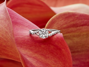 Allisons-Ring-Rose-cropped