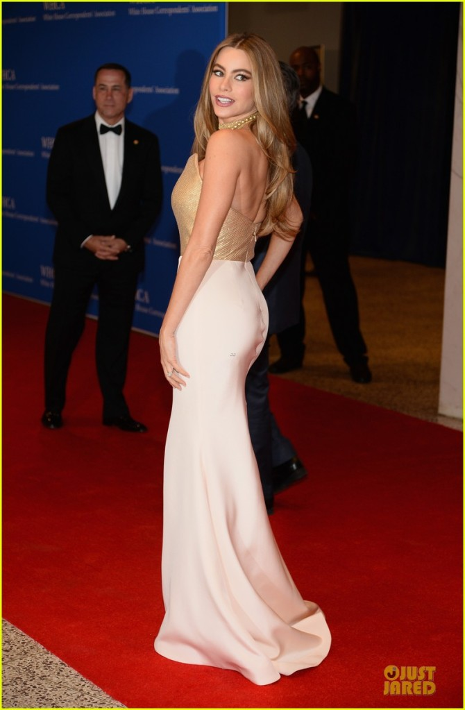 sofia-vergara-white-house-dinner-2014-03